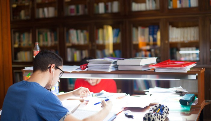La Biblioteca (2)